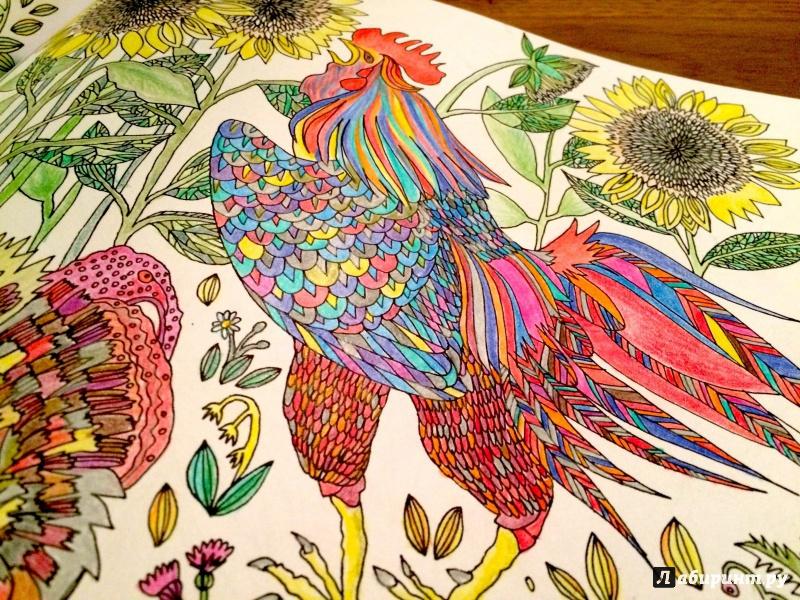 Иллюстрация 17 из 50 для Птицы счастья. Раскрась свой мир и добавь жизни цвета | Лабиринт - книги. Источник: сташевская  гита нонна