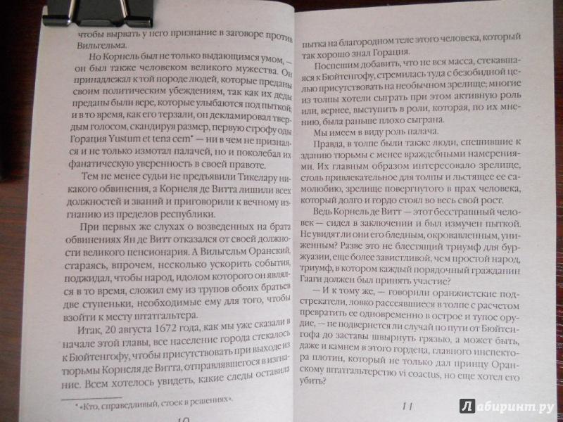 Иллюстрация 1 из 16 для Черный тюльпан - Александр Дюма   Лабиринт - книги. Источник: Шатикова  Ирина