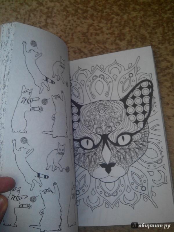 Иллюстрация 37 из 84 для Кототерапия. Мини-раскраска-антистресс для творчества | Лабиринт - книги. Источник: Flash279