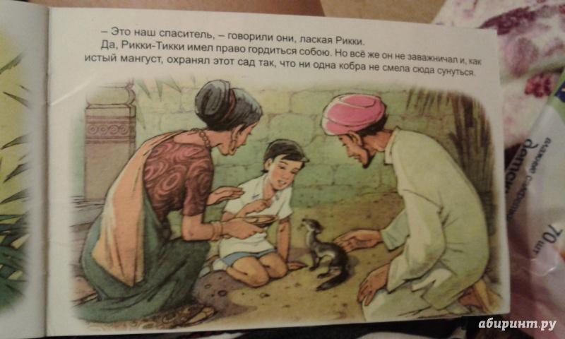 Иллюстрация 16 из 21 для Рикки-Тикки-Тави - Редьярд Киплинг   Лабиринт - книги. Источник: Чибуткина Вера