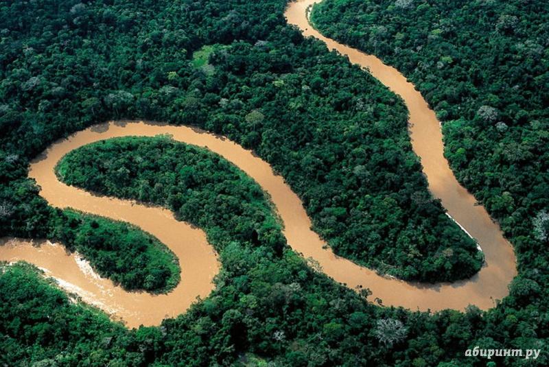 Иллюстрация 1 из 6 для Амазония. Инструкция по выживанию (DVD) - Тьерри Рагоберт | Лабиринт - видео. Источник: Елизовета Савинова