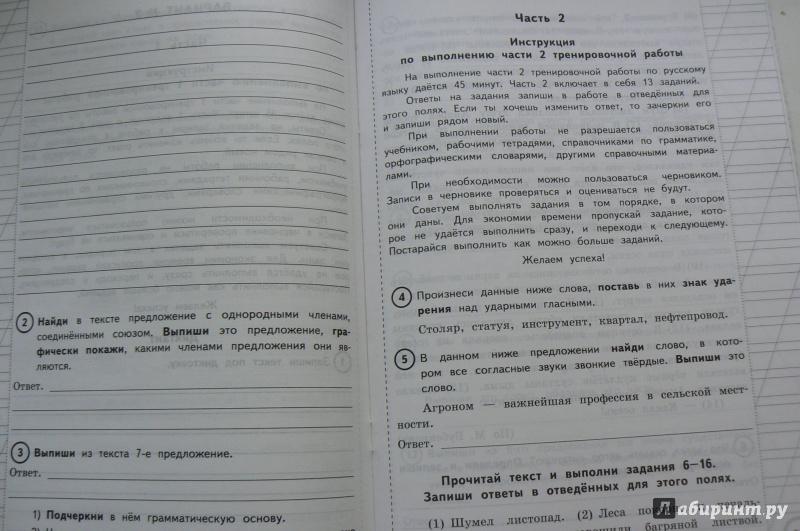 волкова русский язык 3 класс гдз