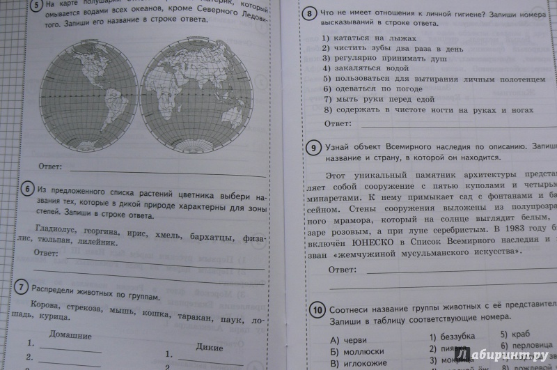 Плешаков новицкая проверочные работы по окружающему миру в 4 классе