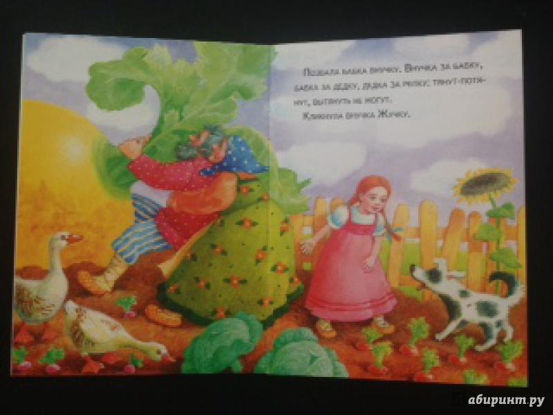 Иллюстрация 34 из 61 для Маленькие сказочки. Репка. Курочка Ряба | Лабиринт - книги. Источник: A.Strelnikova