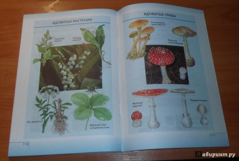 5 в биологию биология тетрадь введение класс гдз