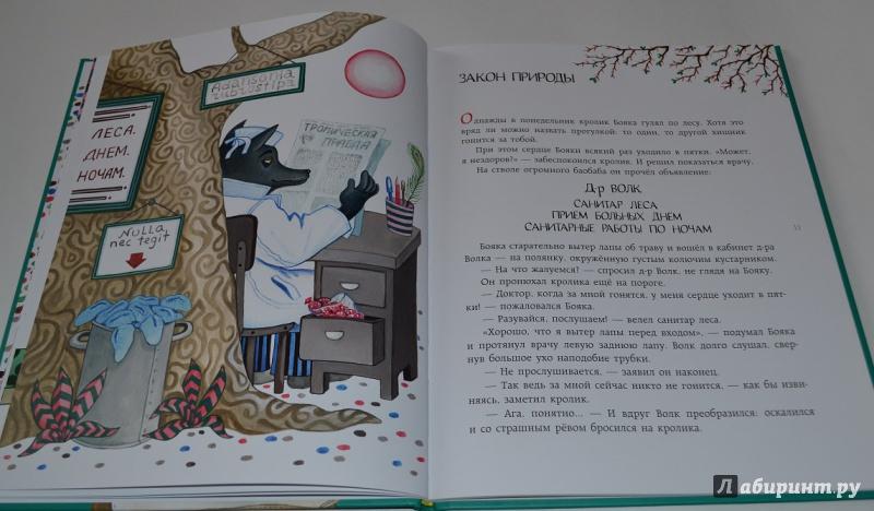 Иллюстрация 10 из 51 для Бояка мухи не обидит - Сергей Макеев | Лабиринт - книги. Источник: leontyua
