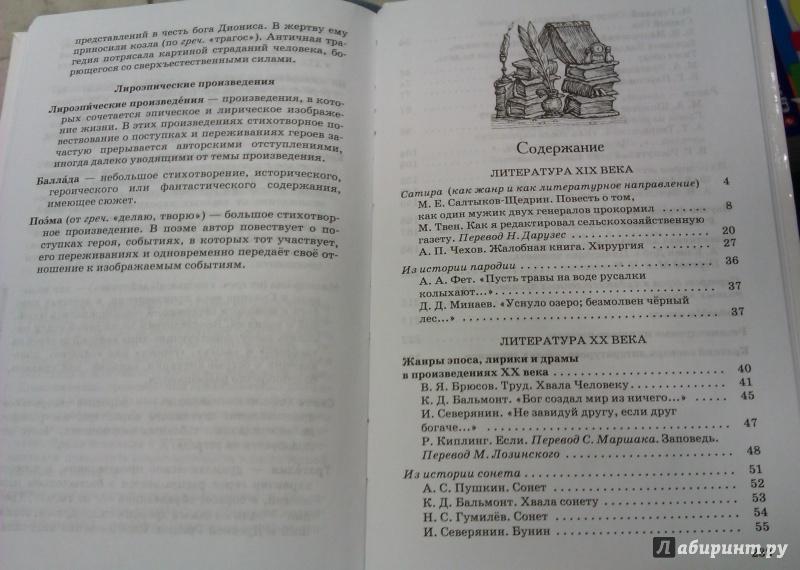Гдз По Литературе Учебник Курдюмовой