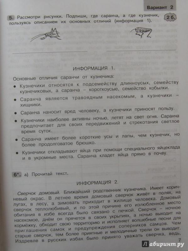 По холодова по мищенкова носикова гдз текстам комплексным работам