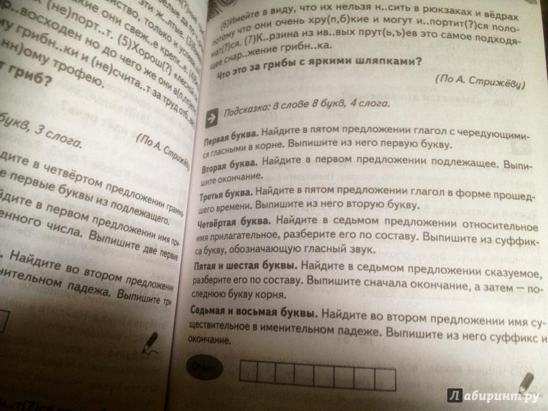 Русский язык 11 класс Контрольные работы в новом формате