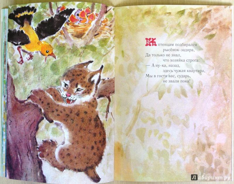 Иллюстрация 19 из 48 для Малышам о малышах. Стихи - Виктор Кожевников | Лабиринт - книги. Источник: adsveta