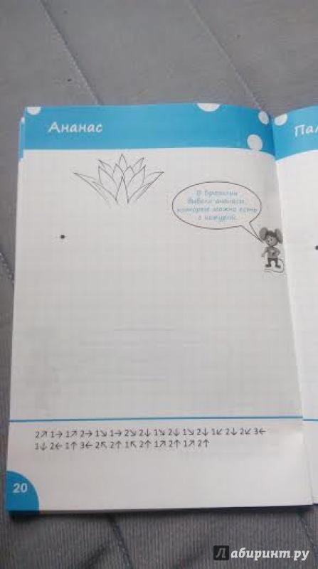 Иллюстрация 9 из 26 для Графические диктанты. Растения и грибы. Тетрадь для занятий с детьми 6-7 лет. ФГОС ДО - Вениамин Мёдов | Лабиринт - книги. Источник: Natalya El-assabi