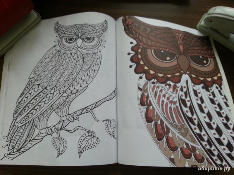Иллюстрация 24 из 42 для Зендудлы. В царстве животных ...
