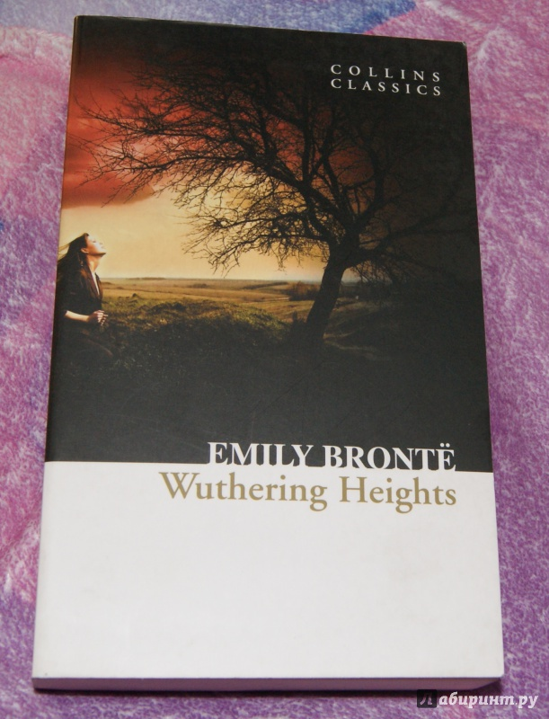isolation and nature in wuthering heights a novel by emily bronte Emily brontë's wuthering heights and isolation your postings on bronte's novel sent me on an although it's true that emily bronte is an.