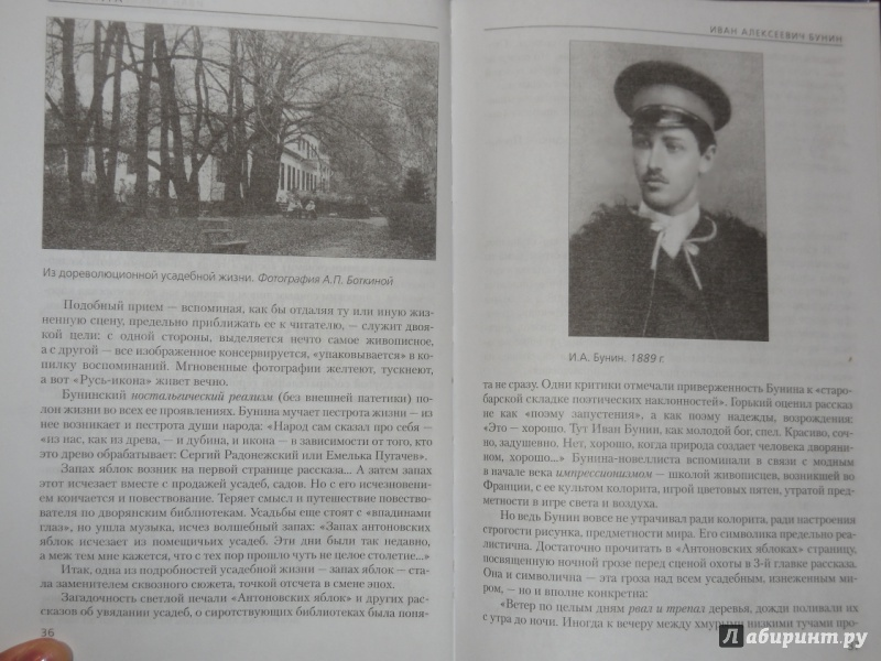 Русский язык и литература. Литература. 11 класс. Учебник. Базовый.