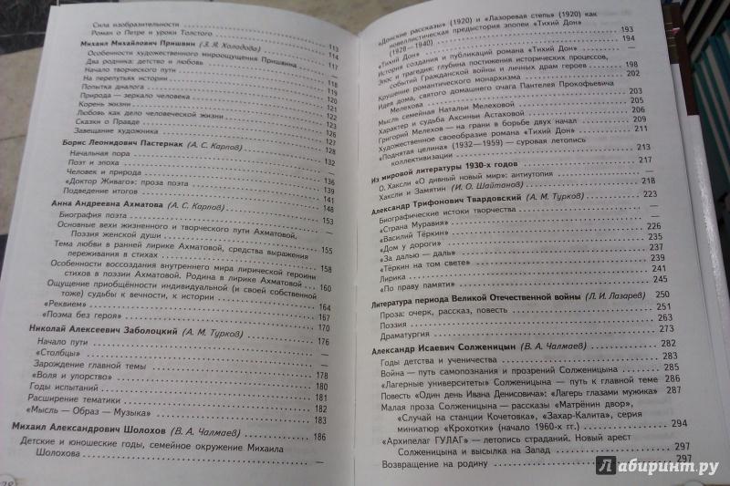 Гдз По Русской Литературы 11 Класс