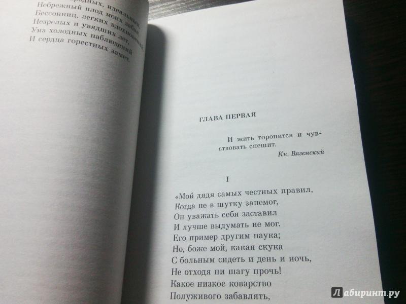 Иллюстрация 16 из 35 для Евгений Онегин - Александр Пушкин   Лабиринт - книги. Источник: Карнюшкина  Ирина