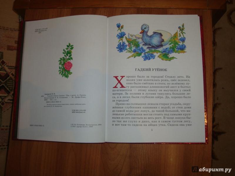 Иллюстрация 1 из 4 для Гадкий утенок: Сказки - Ханс Андерсен | Лабиринт - книги. Источник: Зубова  Эльвира