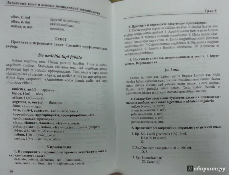 городкова латинский язык pdf