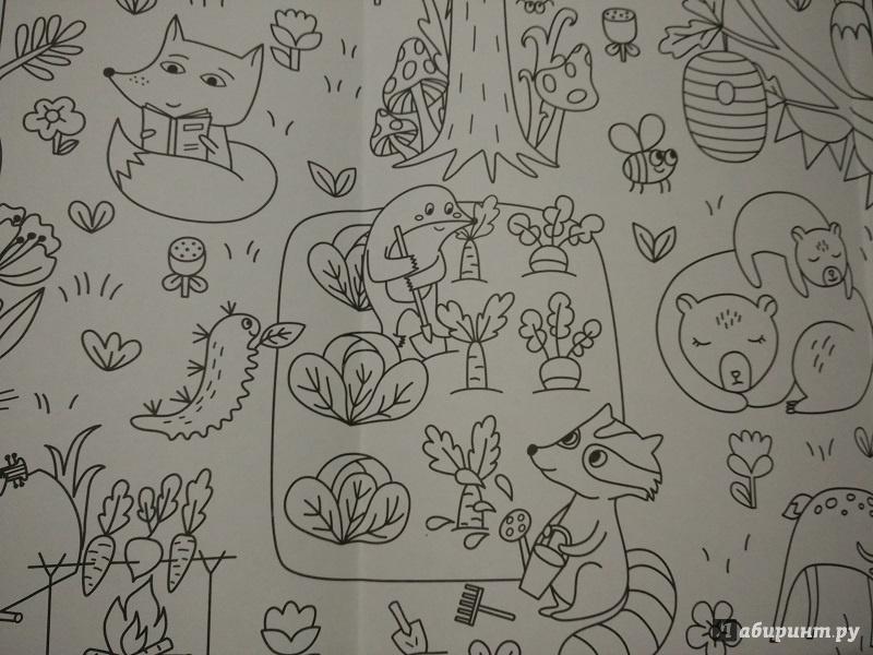 Иллюстрация 7 из 19 для Сказочный лес. Раскраска-плакат ...
