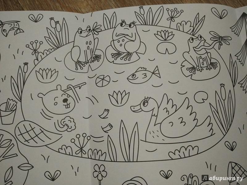 Иллюстрация 9 из 19 для Сказочный лес. Раскраска-плакат ...
