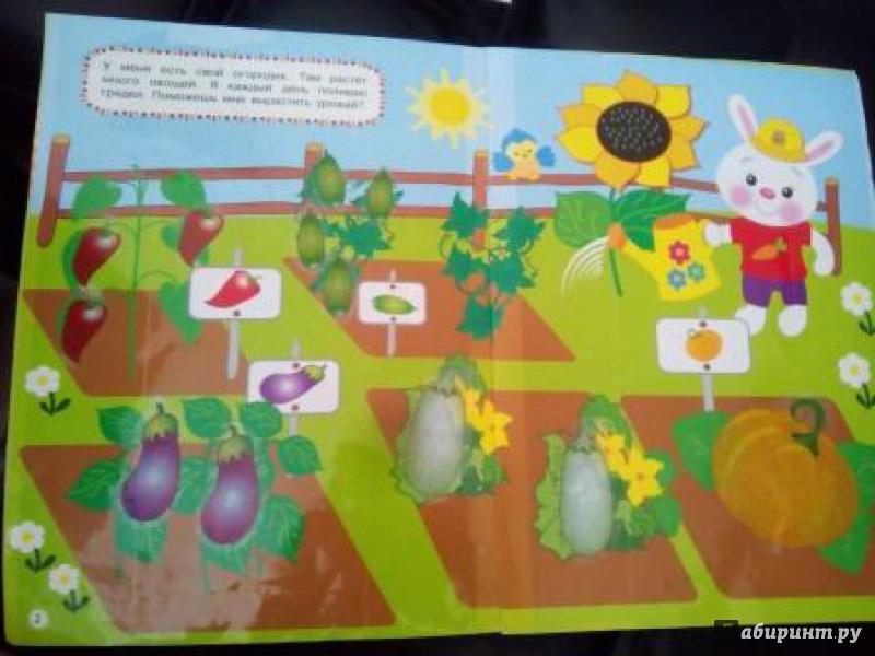 Иллюстрация 33 из 40 для Овощи-фрукты | Лабиринт - книги. Источник: Элен
