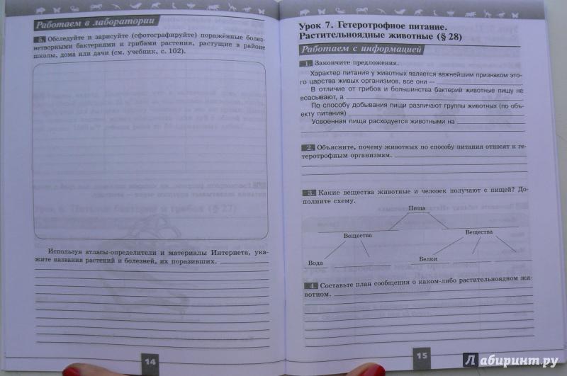 гдз по биологии 6 класс рабочая тетрадь пасечник суматохин
