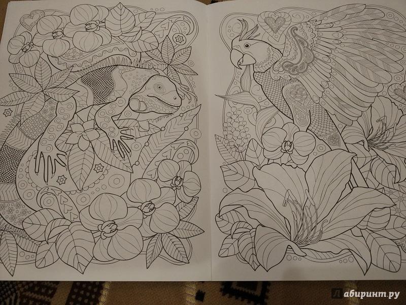 Иллюстрация 6 из 25 для Тропики. Раскраска   Лабиринт - книги. Источник: Melaschka