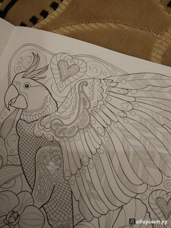 Иллюстрация 7 из 25 для Тропики. Раскраска | Лабиринт - книги. Источник: Melaschka