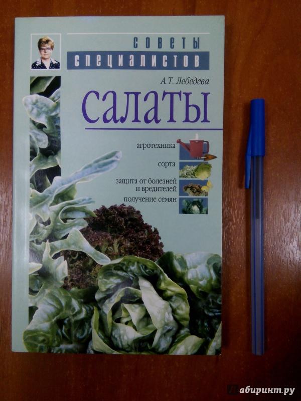 Иллюстрация 1 из 15 для Салаты - Анастасия Лебедева | Лабиринт - книги. Источник: Лабиринт