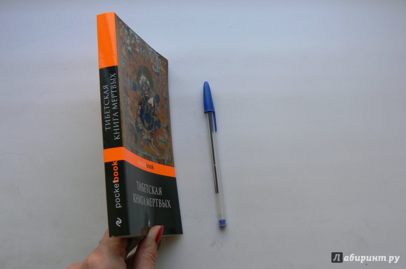 ВВЕДЕНИЕ В БАРДО ТХЕДОЛ БУРХАЕВ ТОРРЕНТ СКАЧАТЬ БЕСПЛАТНО
