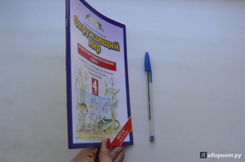 Иллюстрация 1 из 4 для Окружающий мир. 4 класс. Проверочные и диагностические работы к учебнику Г.Г. Ивченковой и др. ФГОС - Потапов, Калинина | Лабиринт - книги. Источник: Марина