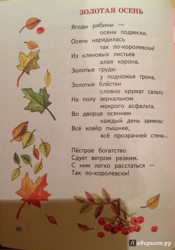 Иллюстрация 2 из 45 для О слонах, троллейбусах и принцах - Анна Игнатова | Лабиринт - книги. Источник: Nadezhda  Marchenko