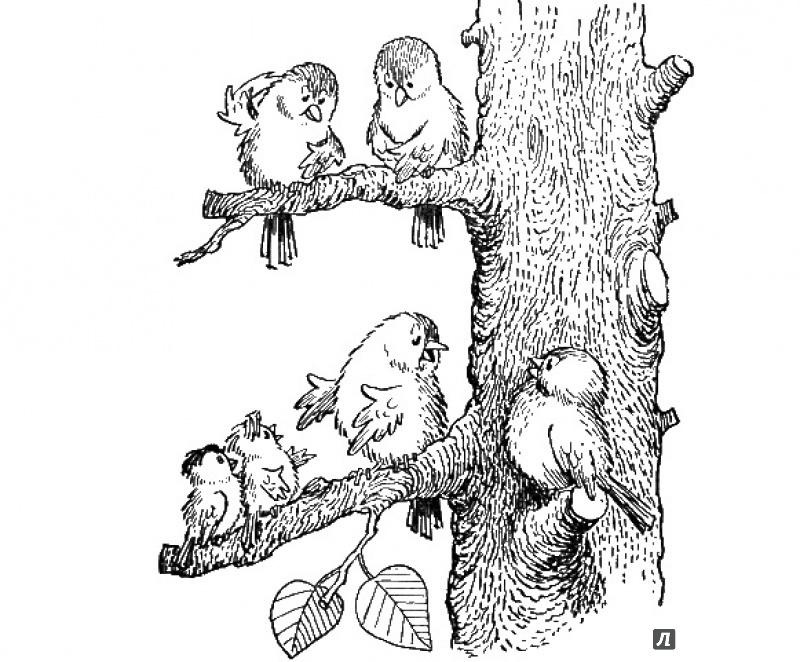 Иллюстрация 24 из 27 для Быть котом - Мэтт Хейг | Лабиринт - книги. Источник: Людмила Леонидовна