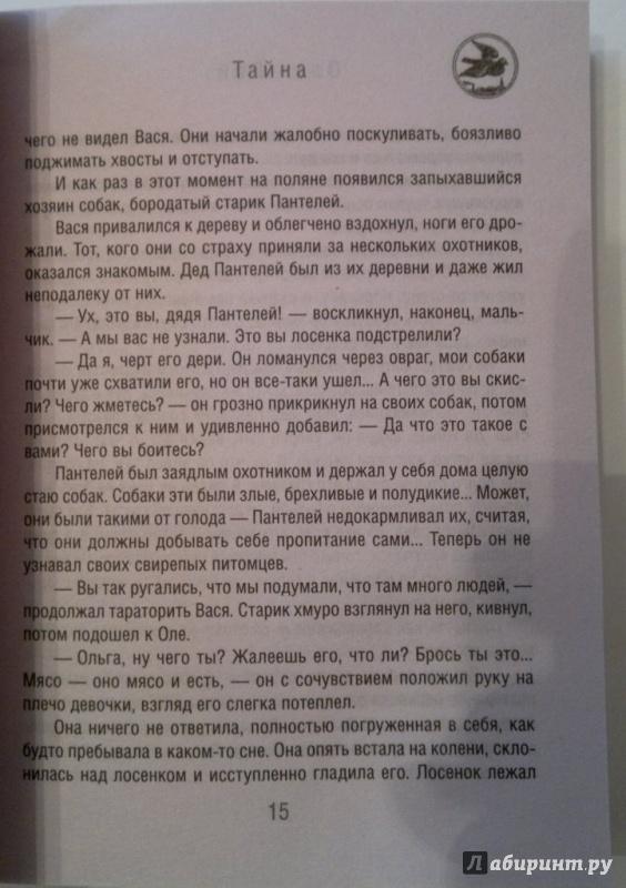 Иллюстрация 12 из 14 для Тайна - Олег Рой | Лабиринт - книги. Источник: Скочилова  Елена