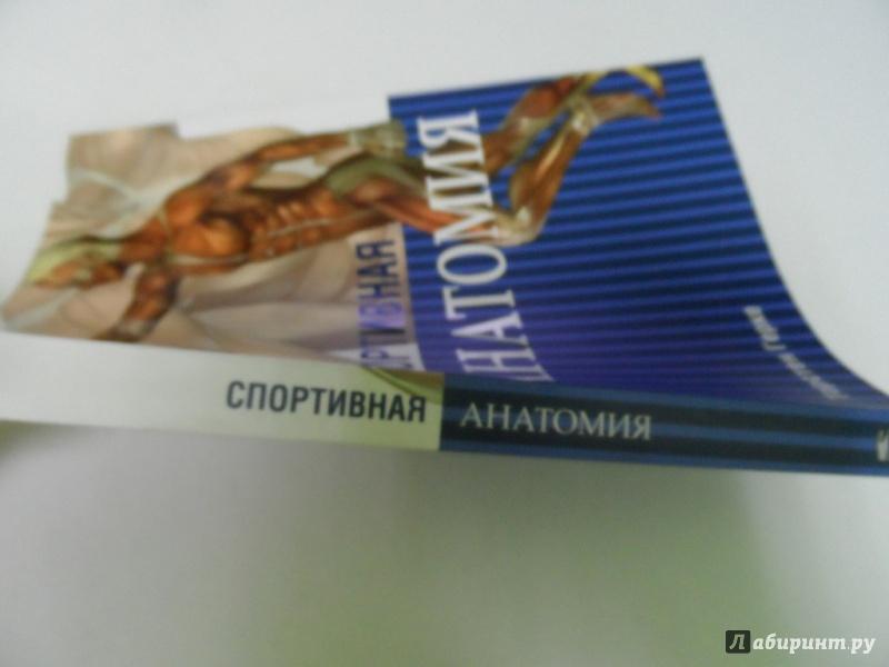 СПОРТИВНАЯ АНАТОМИЯ ТОРСТЕН ГЕРКЕ СКАЧАТЬ БЕСПЛАТНО