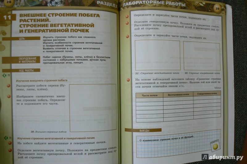 Биология 5-6 Класс Сухорукова Тетрадь Практикум Решебник