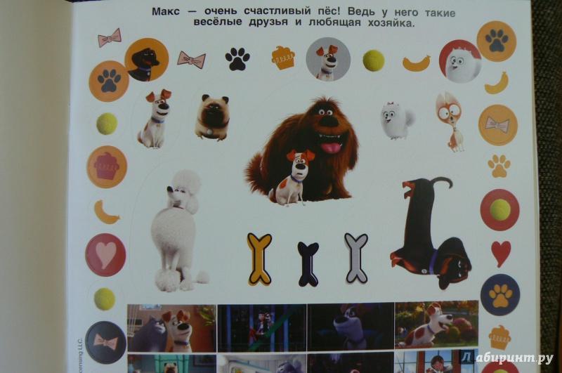 Тайная жизнь домашних животных 2016 смотреть онлайн в