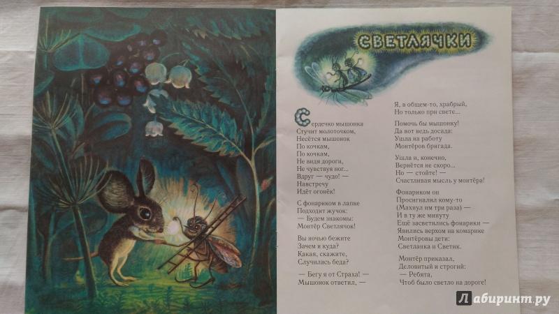 Иллюстрация 84 из 111 для Сказка о страхе - Екатерина Серова | Лабиринт - книги. Источник: Ирина Р.