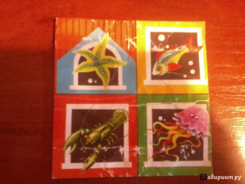 """Иллюстрация 48 из 53 для Кубики """"Baby Step. Лесные животные"""". 4 кубика, в ассортименте (87325-330)   Лабиринт - игрушки. Источник: Сидорова  Елена Викторовна"""