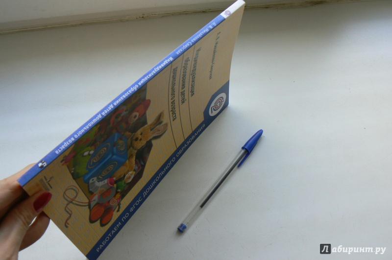 Иллюстрация 1 из 4 для Индивидуализация  образования детей дошкольного возраста. ФГОС - Лидия Михайлова-Свирская | Лабиринт - книги. Источник: Марина