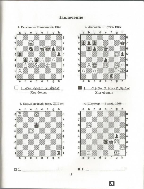 решебник завлечение шахматный костров