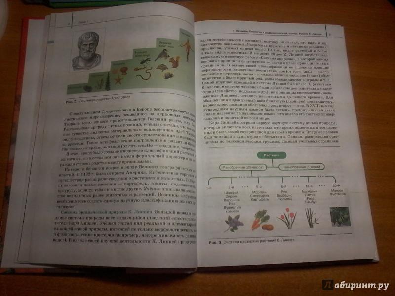 Новый учебник по биологии 11 класс сивоглазов рождается хлеб сочинение