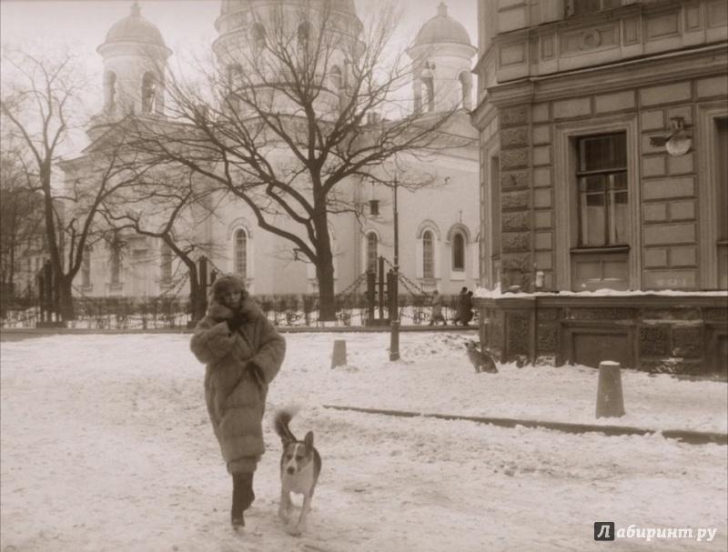Иллюстрация 1 из 20 для Собачье сердце (DVD) - Владимир Бортко   Лабиринт - видео. Источник: Миногина  Наталья