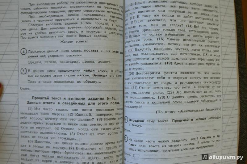 Часть русскому языку год по решебник 2018 2