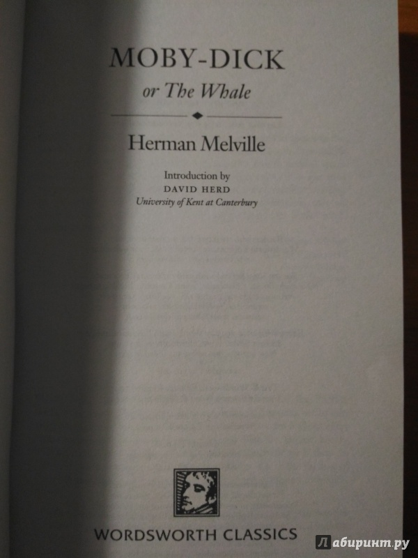 an analysis of a characters in moby dick by herman melville Herman melville's childhood was an unconventional one there were many twists and turns that herman experienced melville was born on august 1 these hardships are evident throughout his writings and symbolized in moby dick by the character ishmael the name ishmael can be traced.