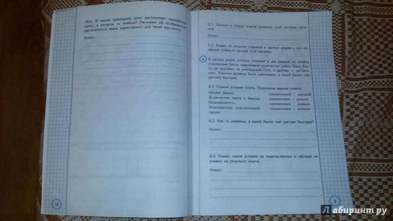 Мир курс гдз за начальной окружающий школы всероссийская проверочная работа