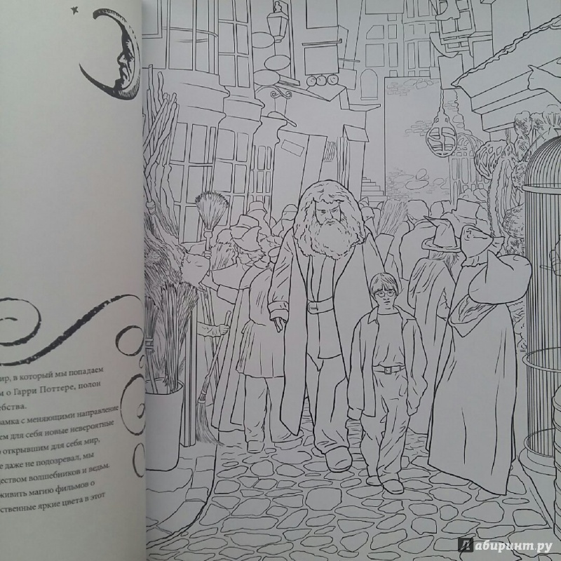 Иллюстрация 28 из 60 для Гарри Поттер. Волшебники и где их ...