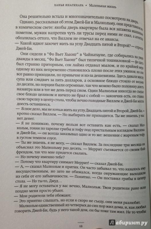 читать книгу маленькая жизнь янагихара всю полностью отель Любашин