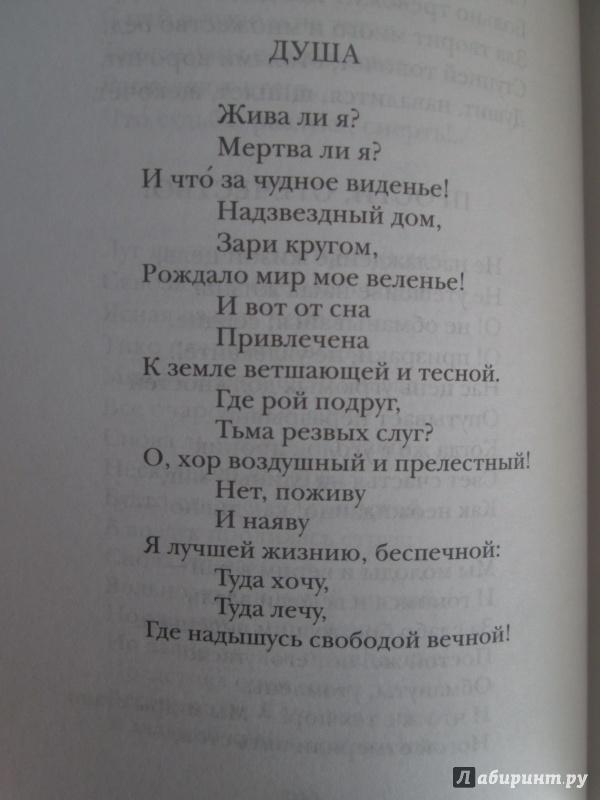 Иллюстрация 29 из 37 для Горе от ума - Александр Грибоедов | Лабиринт - книги. Источник: NiNon