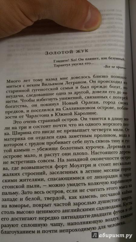 Иллюстрация 1 из 7 для Золотой жук - Эдгар По | Лабиринт - книги. Источник: Якимов  Александр Александрович